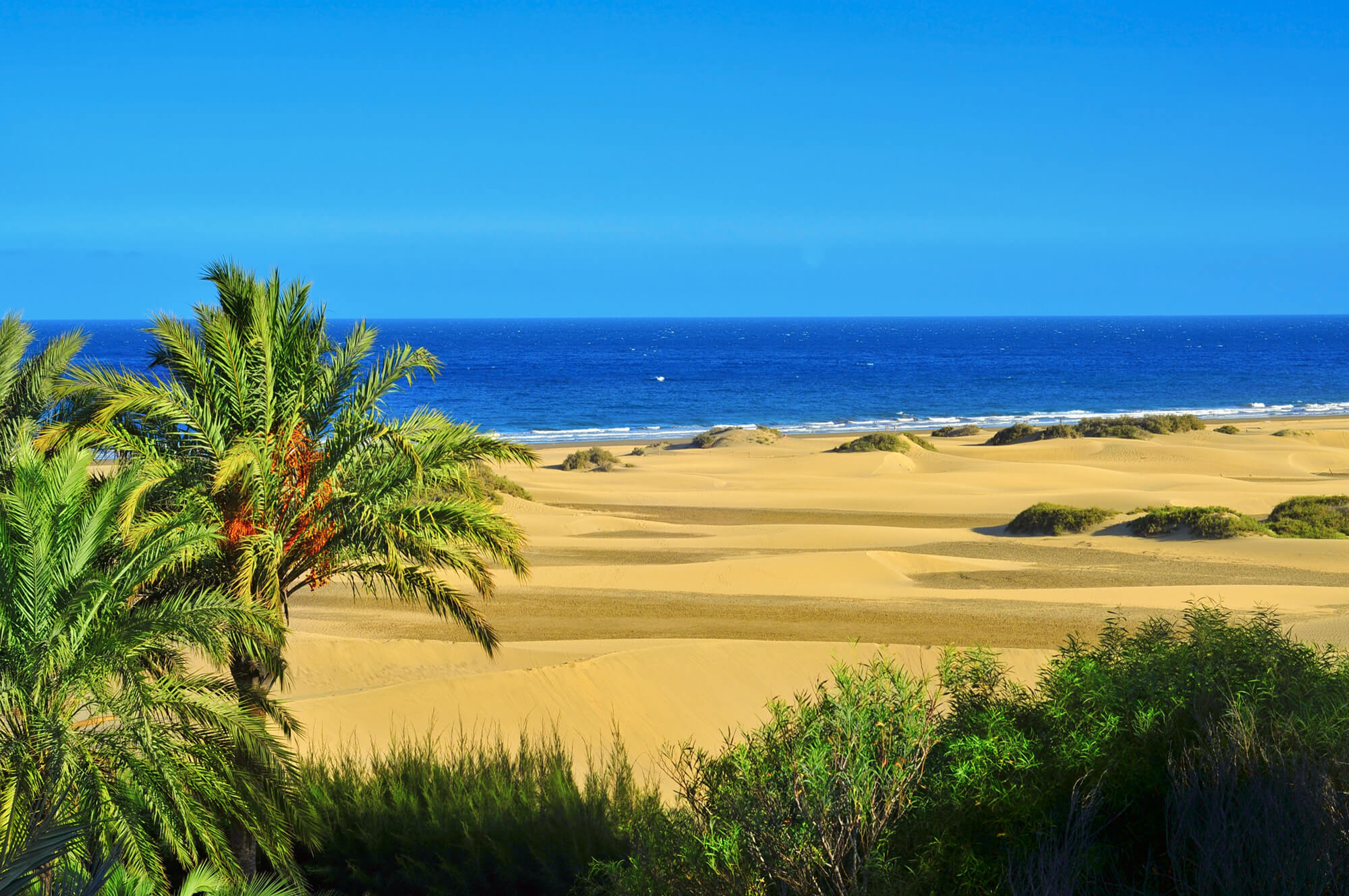 canary islands in december