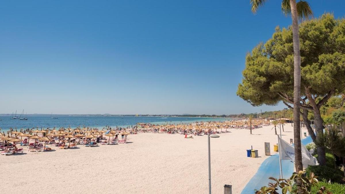 Alcudia garden aparthotel offiziellen website hotel for Design hotel mallorca strand