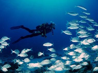 plongee-sus-marine-hotel-fuerteventura