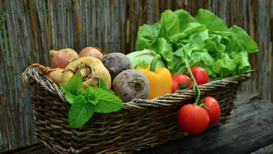 Hotels for vegans in Gran Canaria