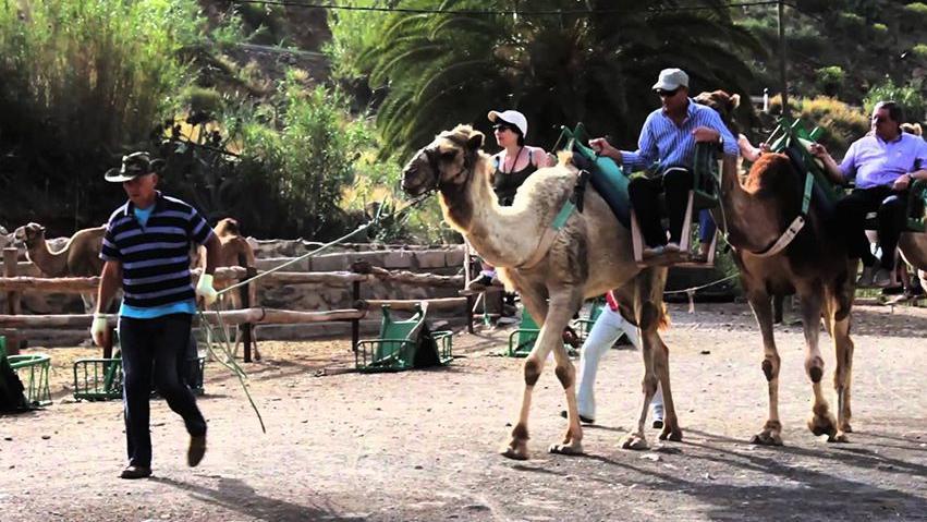 Excursiones en Gran Canaria