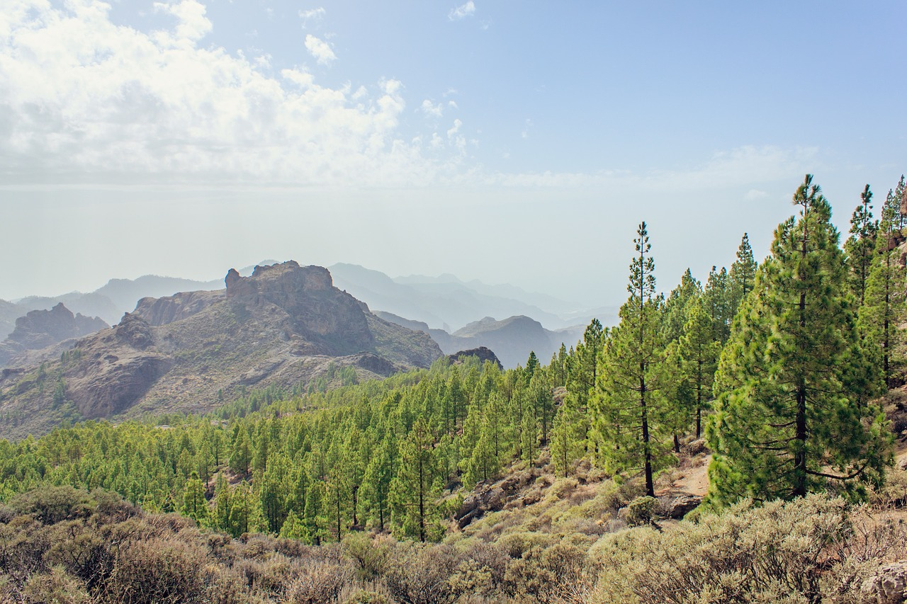 beautiful landscapes in gran canaria