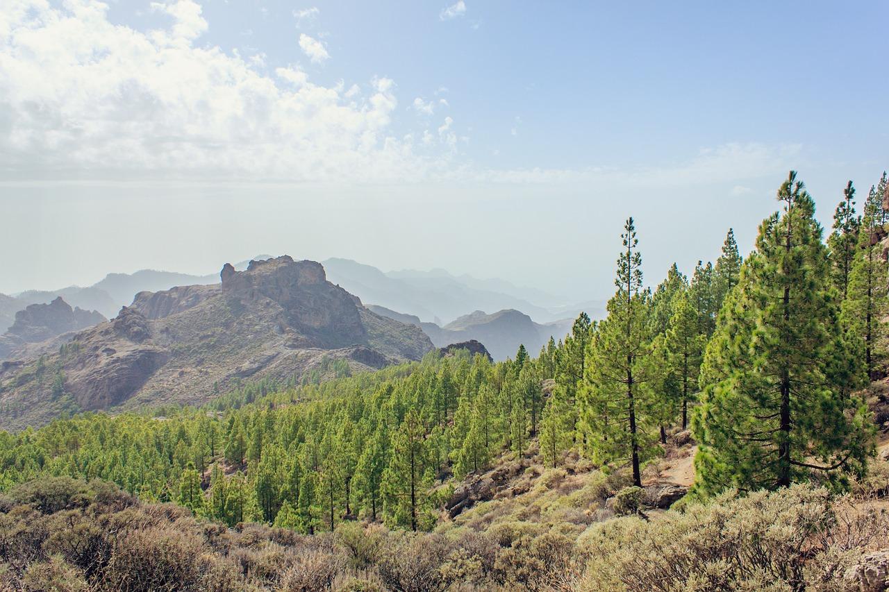 paisajes bonitos de gran canaria