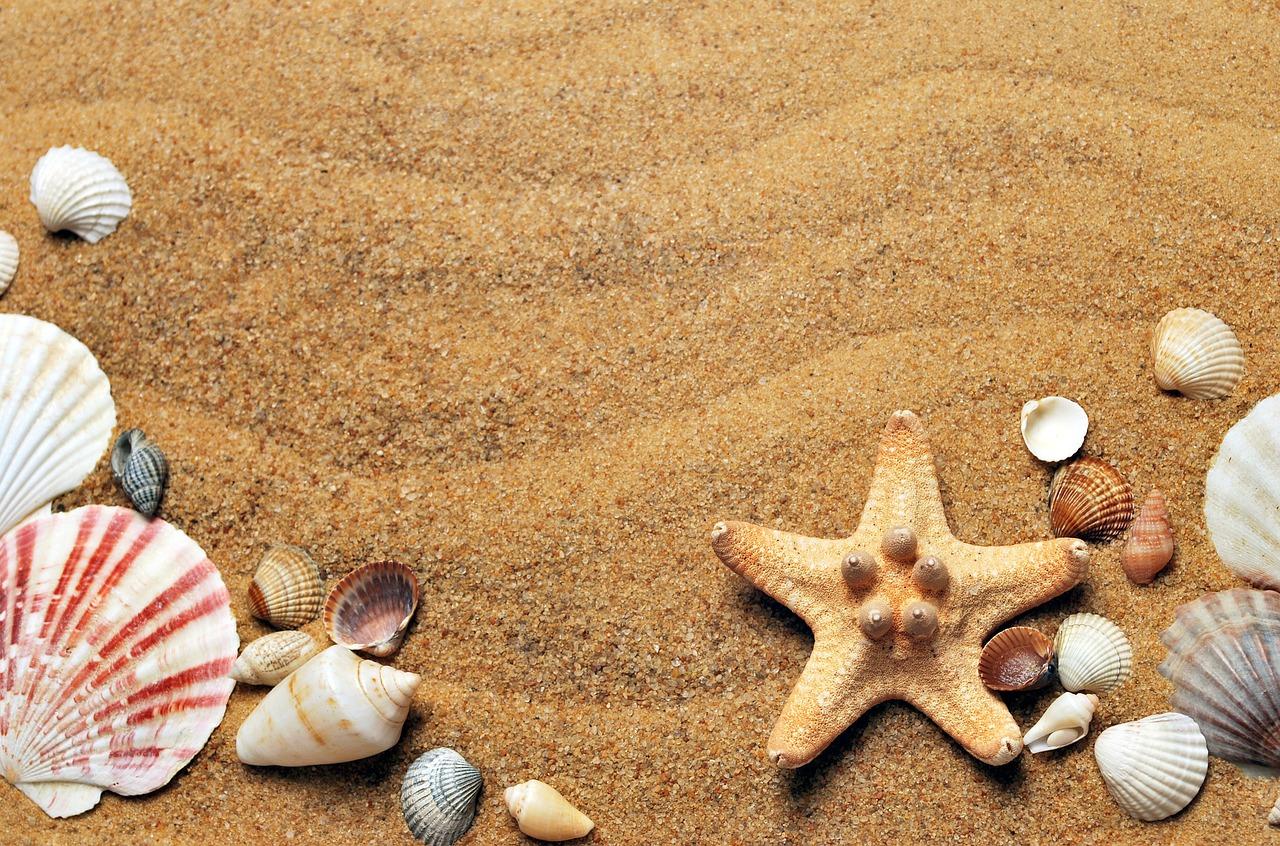 Las 5 playas más bonitas de Gran Canaria