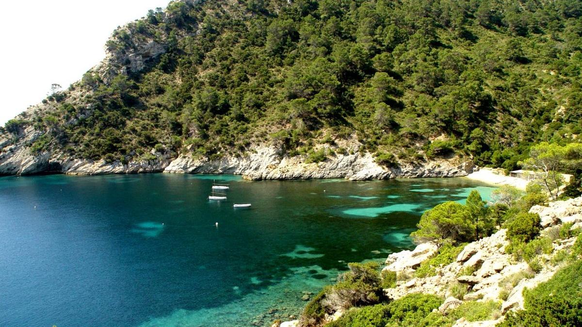 Ibiza | Garden Hotels