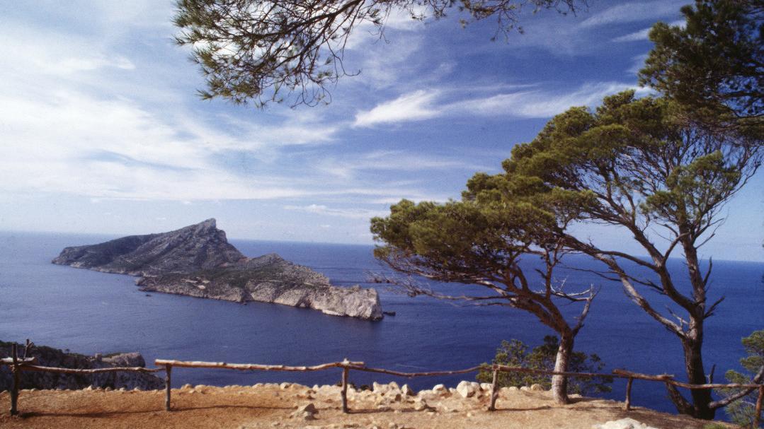Mallorca celebra sus fiestas de invierno
