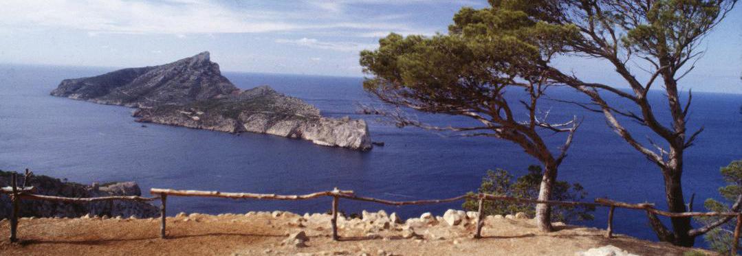 El verano en Mallorca empieza en febrero