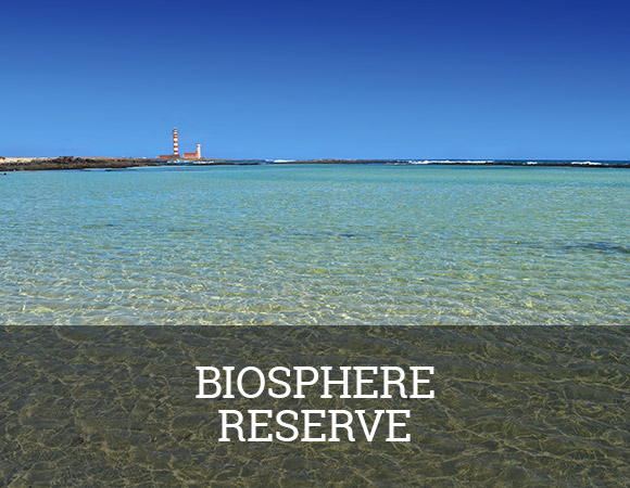 Fuerteventura was designated a UNESCO biosphere reserve in May 2009. The reserve spans a total area of 352.813 hectares and is the largest in the Canary Islands.