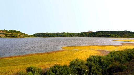 Fauna und Vegetation | Menorca | Garden Hotels